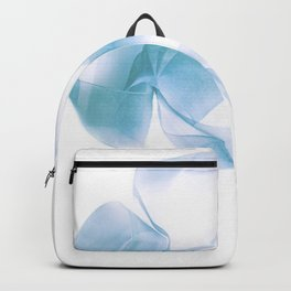 Abstract forms 28 Backpack