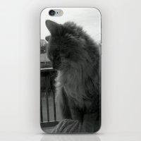 garfield iPhone & iPod Skins featuring Garfield by Jessica Nicole Pacheco