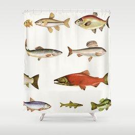 Fishing Line Shower Curtain
