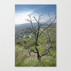 Mountain Tree Canvas Print
