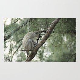 Monkey Itch Rug