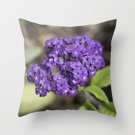 Longwood Gardens - Spring Series 165 Throw Pillow