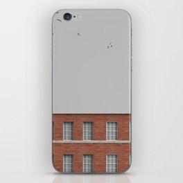 Serie iPhone Skin