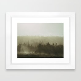 cloudy conifers Framed Art Print