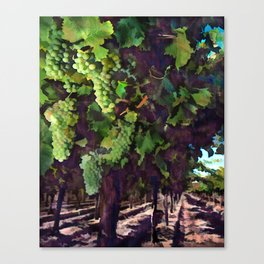 Cascading Grapes on the Vines Canvas Print