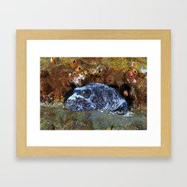 Hiding In Plain Sight Framed Art Print