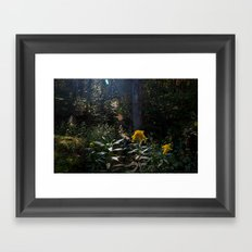 Cynefin. Framed Art Print