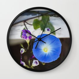 What's the Story, Morning Glory? Wall Clock