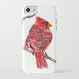Winter Cardinal On White iPhone Case