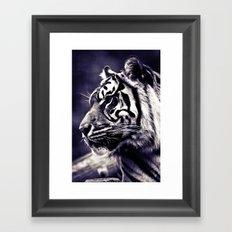 Sumartran Tiger  Framed Art Print