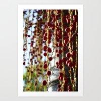 Açaí Berries Art Print