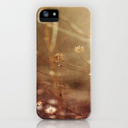 Dry Fall iPhone Case