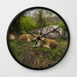 Lionesses Wall Clock