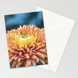 Longwood Gardens Autumn Series 217 Stationery Cards