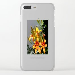 Orange Day Lilies & Buds  Flower Garden Clear iPhone Case