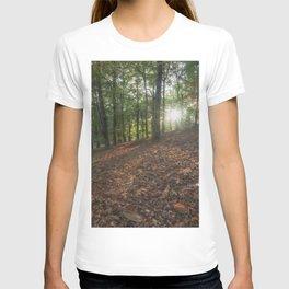 Autumn Sunbeams T-shirt