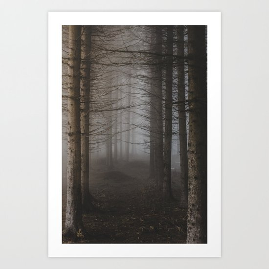 In the still forest Art Print