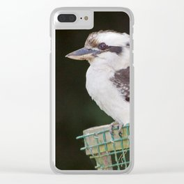 Kookaburra Clear iPhone Case