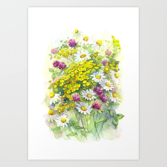 Watercolor meadow flowers spring Art Print