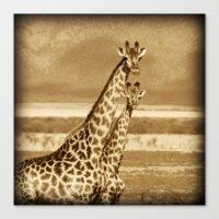 giraffes Canvas Prints featuring Giraffes by haroulita