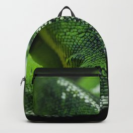 Green Scales Backpack