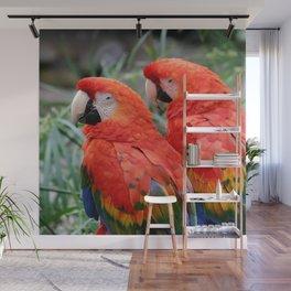 Scarlet Macaws Wall Mural