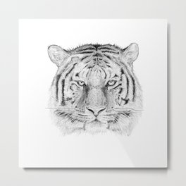 The Tiger - Panthera Tigris Metal Print