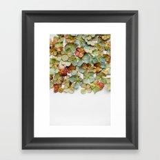 Hydrangea Petals no. 2 Framed Art Print