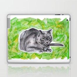 Zedward Laptop & iPad Skin