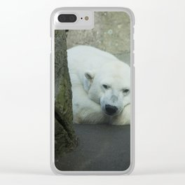 Missing the North Clear iPhone Case