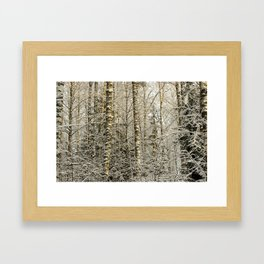 Wintery Forest Framed Art Print