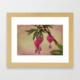 The Bleeding Hearts Framed Art Print