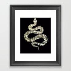Snake's Charm in Black Framed Art Print