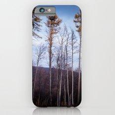 lll Slim Case iPhone 6s
