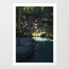 Cenote Art Print
