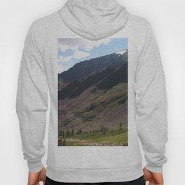 Altai Mountains Hoody