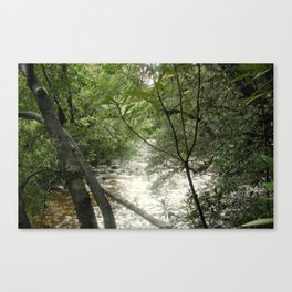 Gordon - Frankin Rivers Canvas Print