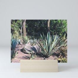 Agave Mini Art Print