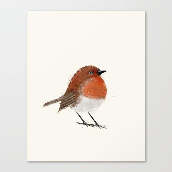 little robin Canvas Print
