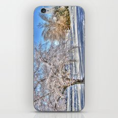 After Ice Storm iPhone & iPod Skin