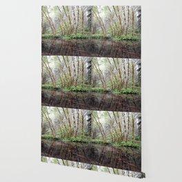 Aspen Reflection Wallpaper