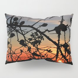 Rose hip in sunrise Pillow Sham