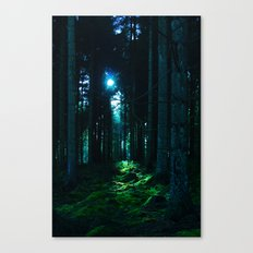 Shaft of Light Canvas Print