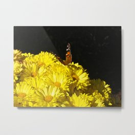 The Butterfly & the Flower... Metal Print