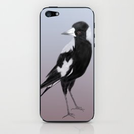 A curious magpie iPhone & iPod Skin