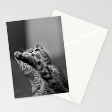 my little cat Stationery Cards
