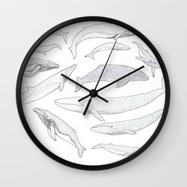 Whales of the world Wall Clock