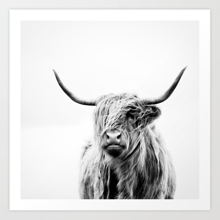 Portrait of a highland cow art print by doritfuhg society6 for Large photographic prints for sale