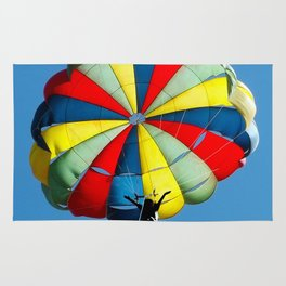 Flying High Rug