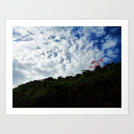 Sky Bound Art Print
